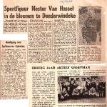 Nestor Van Hassel (voetballer)